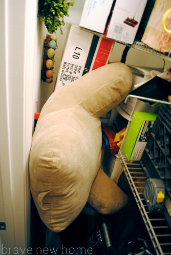 pillow with arms stored in closet