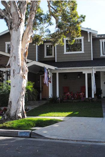 patriotic home 1